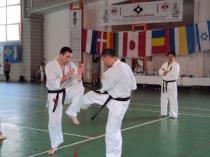 Seminar de vara karate kyokushin 2011