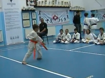 video karate kyokushin
