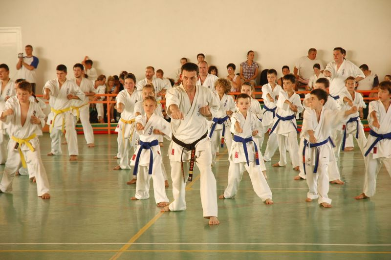 seminar international karate kyokushin