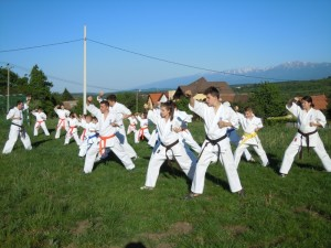 video antrenament karate kyokushin