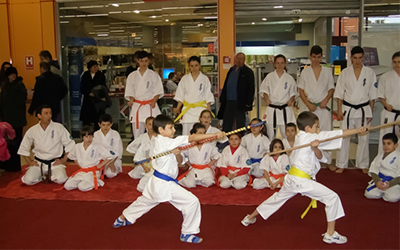 Demonstratie Karate Carrefour