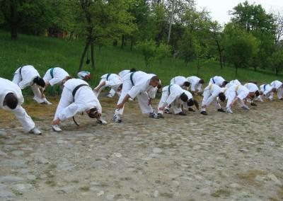 Stagiu Karate Kyokushin Cisnadioara 2009