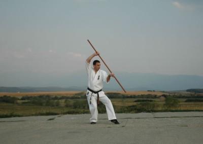 Kata Kyokushinkai Bo