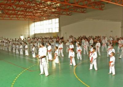 Seminar international Karate Kyokushin