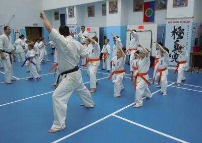 Seminar si examen Karate, Sibiu, 2013