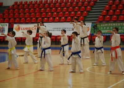"Demonstratie Karate la ""Handball Meets Sibiu"""