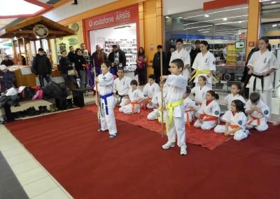 Demonstratie Karate in Carrefour