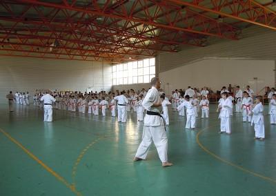 Seminar si Examen International de Vara
