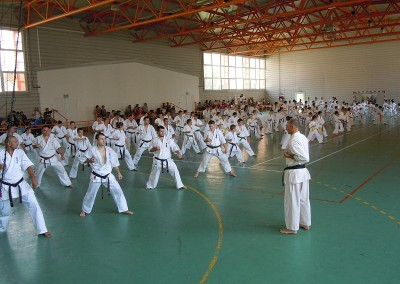 Seminar si Examen International de Vara