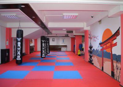 1 sala karate kyokushin