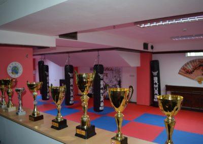 10 sala karate kyokushin