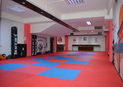11 sala karate kyokushin