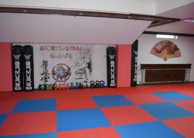 12 sala karate kyokushin