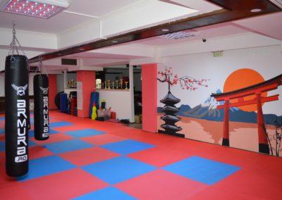 2 sala karate kyokushin