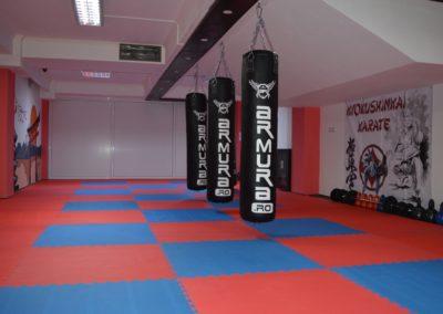 3 sala karate kyokushin