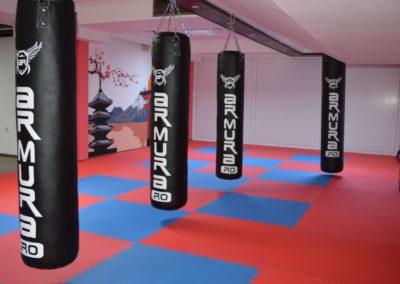 5 sala karate kyokushin