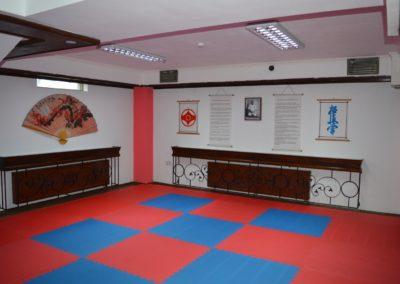 6 sala karate kyokushin