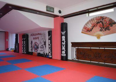 8 sala karate kyokushin