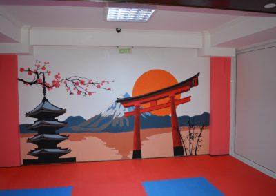 9 sala karate kyokushin