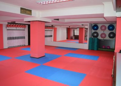 c sala aerobic