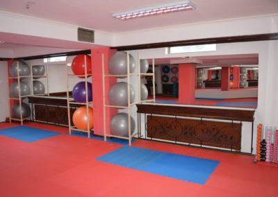 f sala aerobic