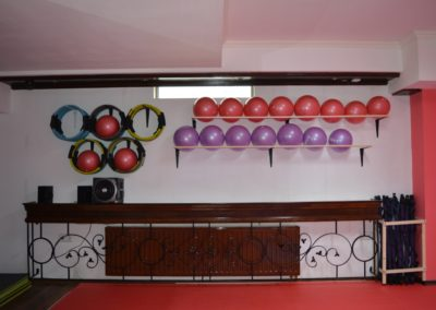 g sala aerobic